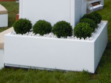 Contemporary Buxus Balls