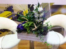 Contemporary wooden herb crate of mixed flowers