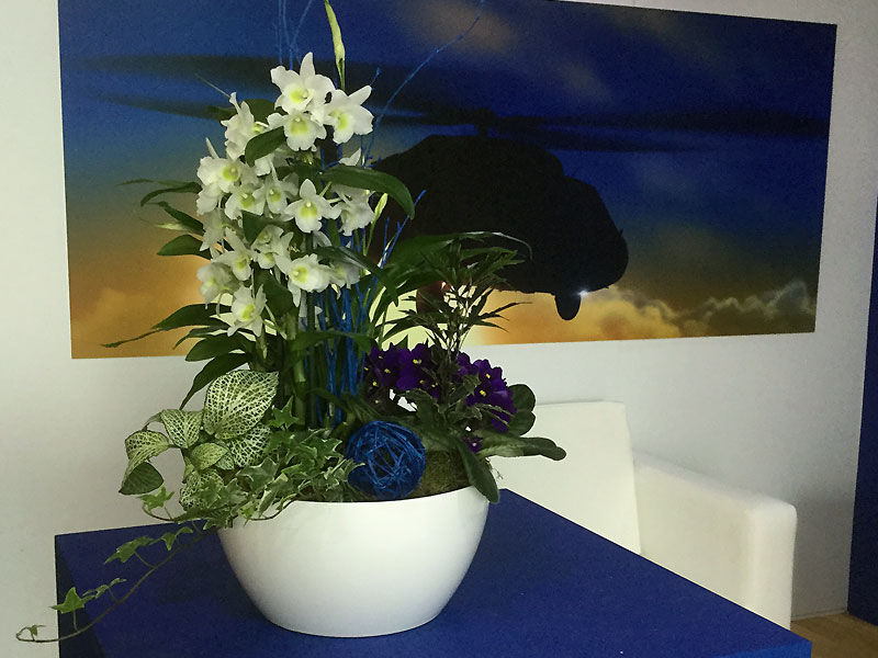 Bowl of Blue & White mixed flowers suitable for Reception