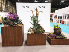Displays created for Photography Show