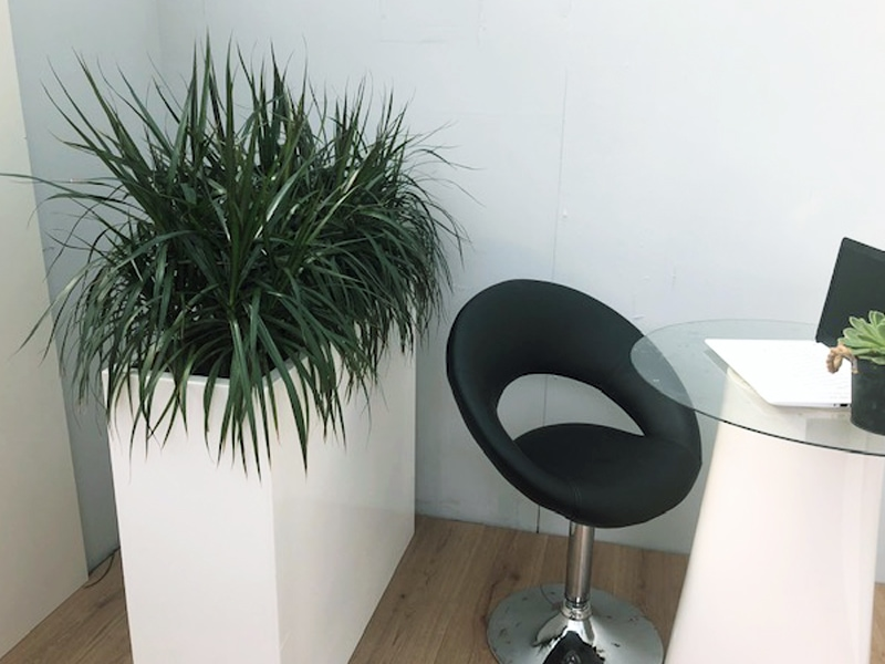 Ideal seating divider